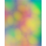 Rainbow Bokeh Printed Backdrop