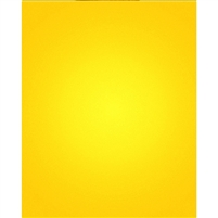 Lemon Yellow Nearly Solid Printed Backdrop