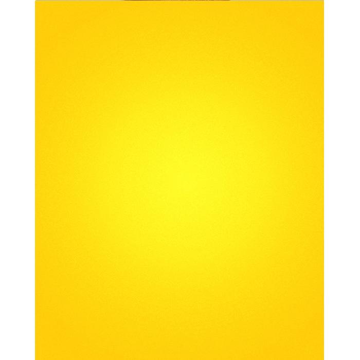 Lemon Yellow Nearly Solid Printed Backdrop Backdrop Express