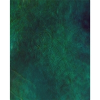 Dark Turquoise Old Masters Backdrop