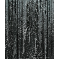 Black Cobweb Planks
