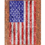 American Flag on Brick Printed Backdrop