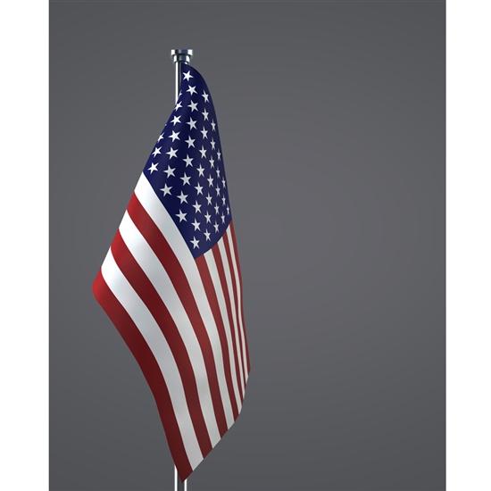 Formal American Flag Printed Backdrop Backdrop Express