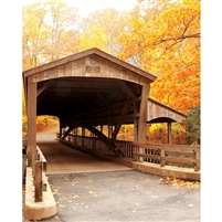 Autumn Bridge Printed Backdrop