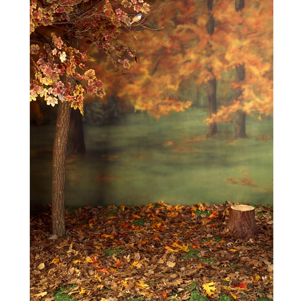 Autumn Forest Printed Backdrop Backdrop Express