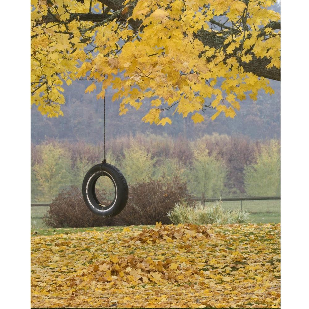 Tire Swing Printed Backdrop Backdrop Express