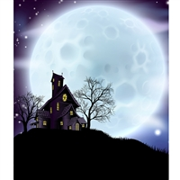 Ghostly Moon Printed Backdrop