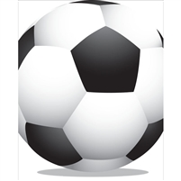 Large Soccerball Printed Backdrop