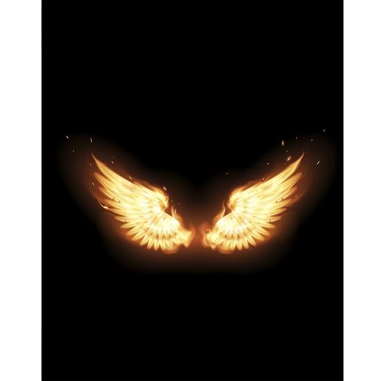 Phoenix Wings Printed Backdrop Backdrop Express