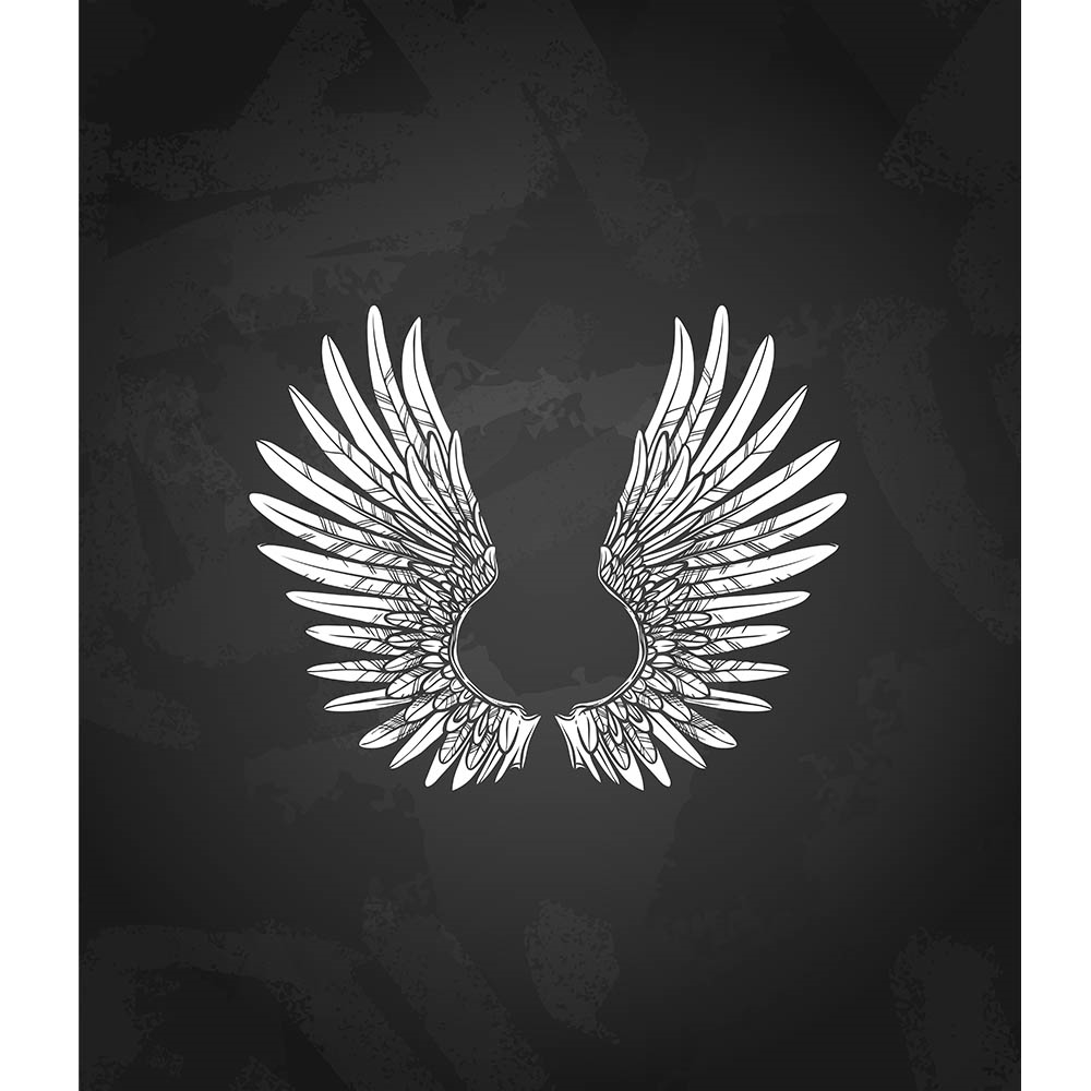 Soaring Wings Printed Backdrop | Backdrop Express