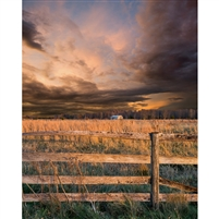 Stormy Grassland Printed Backdrop