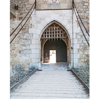 Castle Drawbridge Printed Backdrop