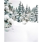 Winter Wonderland Scenic Printed Backdrop