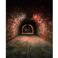 Brick Tunnel Printed Backdrop