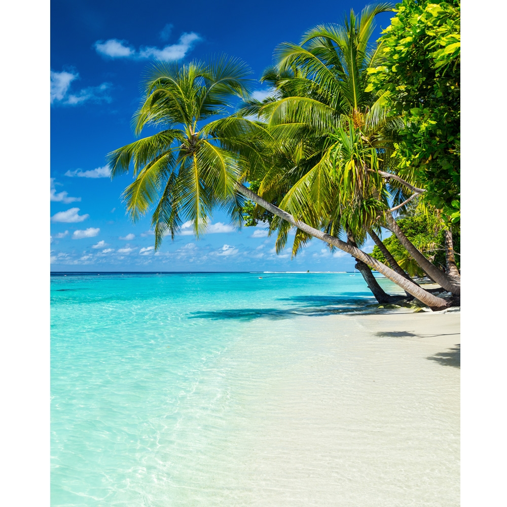 Beach: Serene Beach Scenic Printed Backdrop