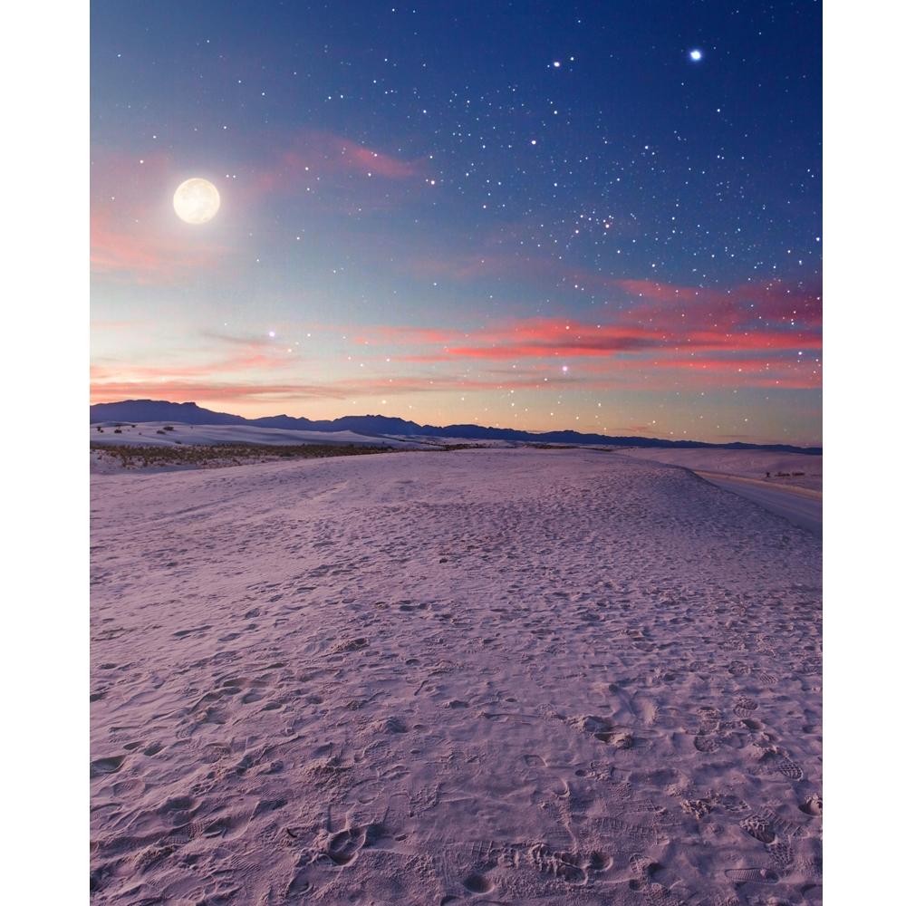 Desert Moon Printed Backdrop Backdrop Express