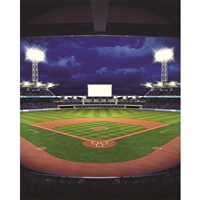 Baseball View Printed Backdrop