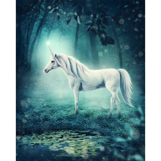 Mystical Unicorn Printed Backdrop Backdrop Express