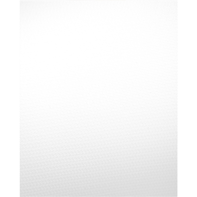 Pure White Vinyl Background Backdrop Express