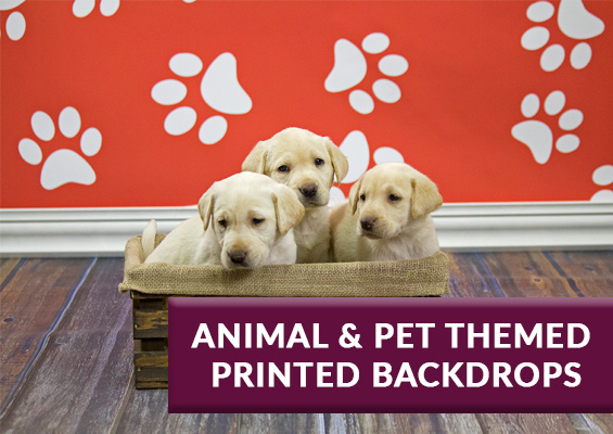 pet and animal printed backdrops