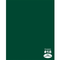 Evergreen Seamless Backdrop Paper