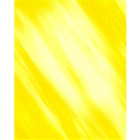 Bright Yellow Old Masters Backdrop