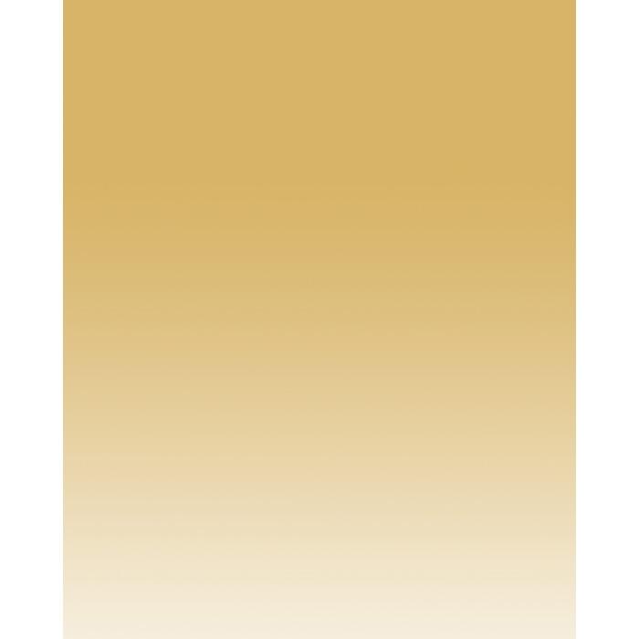 tan linear gradient backdrop