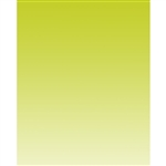 Green Lime Linear Gradient Backdrop