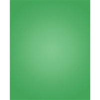 Holiday Green Nearly Solid Printed Backdrop