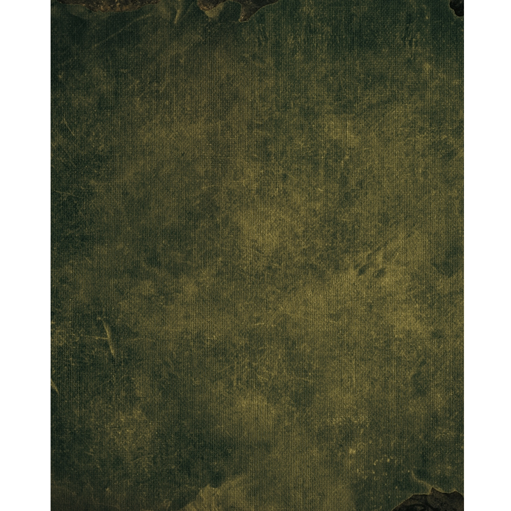 Olive Green Mottled Printed Backdrop Backdrop Express