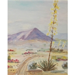 Painted Desert Scene Printed Backdrop