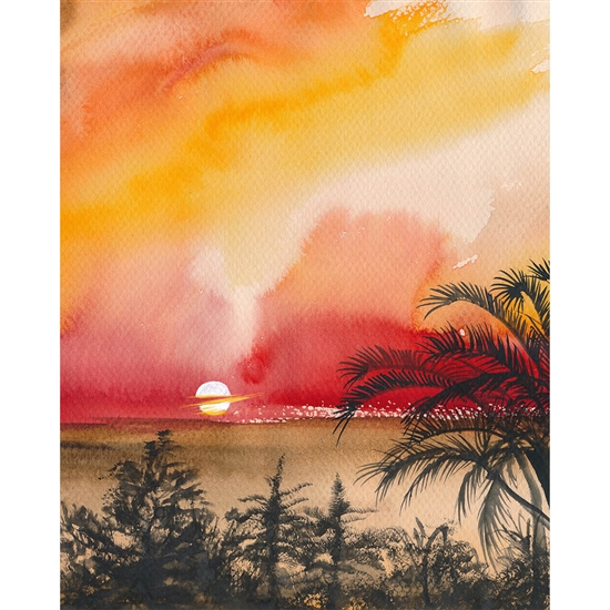 Palm Beach Sunset Printed Backdrop