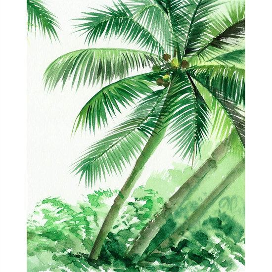 Palm Tree Jungle Printed Backdrop