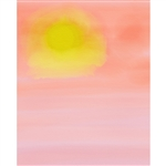 Pink Sunset Printed Backdrop