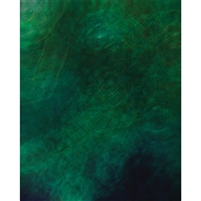 Deep Sea Old Masters Printed Backdrop