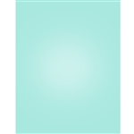 Pale Blue Nearly Solid Printed Backdrop