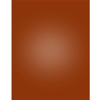 Burnt Orange Nearly Solid Printed Backdrop