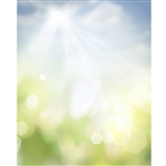 Sunbeam Bokeh Printed Backdrop