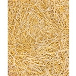Dry Straw Printed Backdrop