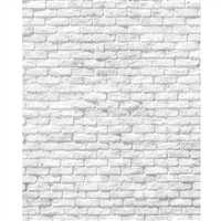 Worn White Brick Printed Backdrop
