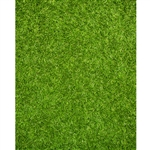 Fresh Cut Grass Printed Backdrop