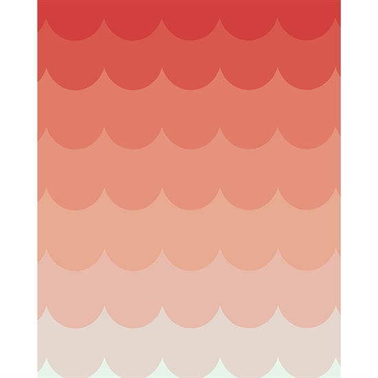 Strawberry Ombre Printed Backdrop Backdrop Express