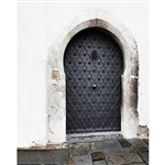 Ornate Steel Door Printed Backdrop