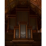 Grand Organ Printed Backdrop