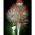 Streaming Fireworks Printed Backdrop