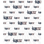 4th of July Printed Backdrop