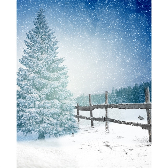 Winter Dream Printed Backdrop