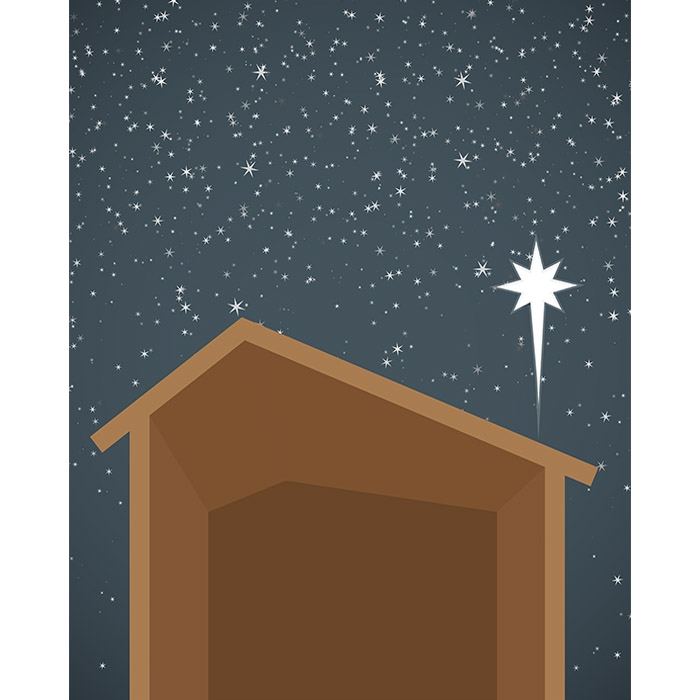 Nativity Manger Printed Backdrop Backdrop Express