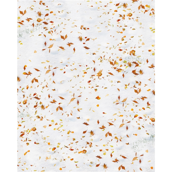 Autumn Leaves in the Snow Printed Backdrop