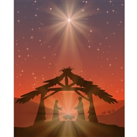 Nativity Scene Printed Backdrop